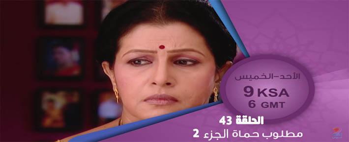 مسلسل مطلوب حماة الجزء 2 الحلقة 43 مدبلج