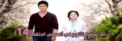 مسلسل Snow In August Episode الحلقة 14 تساقط الثلوج في أغسطس مترجم