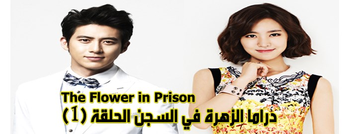 مسلسل The Flower In Prison Episode 1 الحلقة 1 الزهرة في السجن مترجم