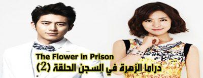 مسلسل The Flower In Prison Episode 2 الزهرة في السجن الحلقة 2 مترجم